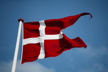 Swallowtail Dannebrog waving. The royal Danish Flag. Denmark.
