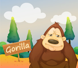 A gorilla beside a signboard