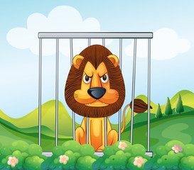 A cage in the hill with a lion