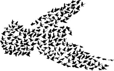 complex black pigeon silhouette