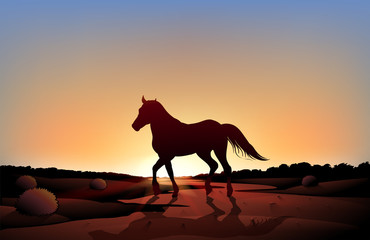 A horse in a sunset scenery at the desert