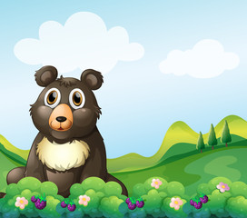 Canvas Prints Bears A big bear sitting in the garden