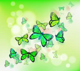 A group of green butterflies