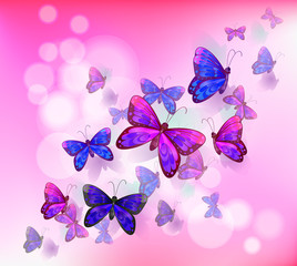 Zelfklevend Fotobehang Vlinders A pink stationery with a group of butterflies