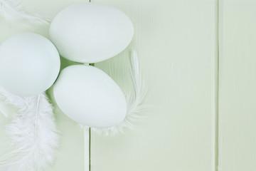 Fresh Ameraucana Eggs and Feathers