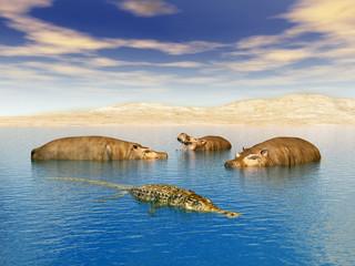 Flusspferde mit Krokodil