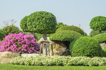 Tropical garden in Thailand