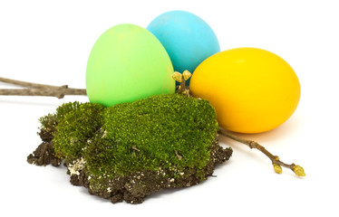 Easter eggs and moss  isolated on white