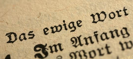 bible in german