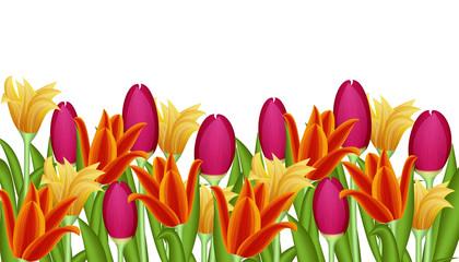 Frühlingswiese mit Tulpen