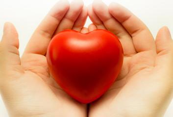 heart in hand 2