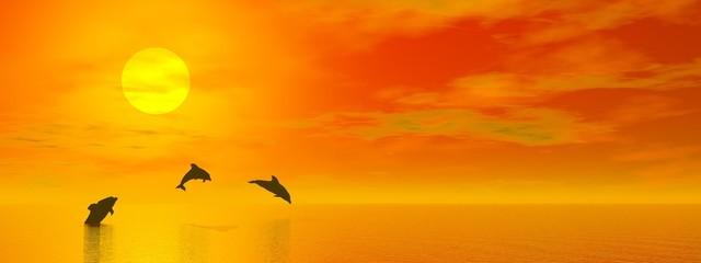 Spoed Fotobehang Dolfijnen Dolphins by sunset - 3D render