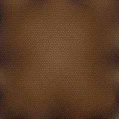Brown animal skin