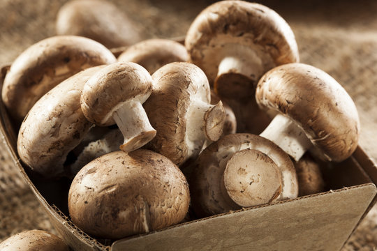 Organic Brown Baby Bella Mushrooms