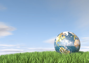 3d render of the earth in tall grass