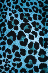 Blue cheetah pattern