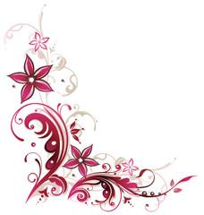 Ranke, Sommer, Blumen, Blüten, pink