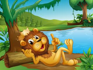Foto op Plexiglas Rivier, meer A king lion lying in a trunk at the riverside