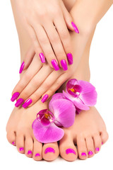 Foto op Plexiglas Pedicure pink manicure and pedicure with a orchid flower