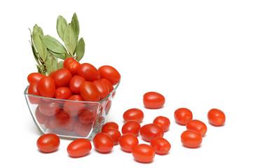 Pomidory 6
