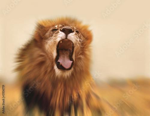 lion photo libre de droits sur la banque d 39 images image 51106719. Black Bedroom Furniture Sets. Home Design Ideas