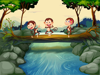 Foto op Plexiglas Rivier, meer Three monkeys crossing the river