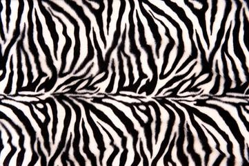 Foto op Aluminium Zebra Zebra Pattern