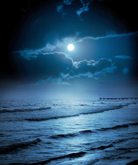 Foto op Aluminium Volle maan Moonlight