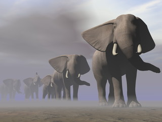 Elephants in a row - 3D render