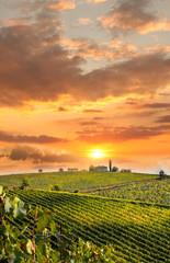 Papiers peints Vignoble Chianti, famous vineyard in Italy
