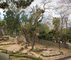 Animal enclosure in a zoo