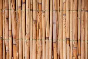 Japanese bamboo texture for background. Bamboo wall