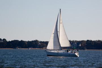 Sailboat on a lake,