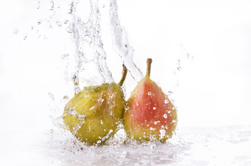 Poster Eclaboussures d eau pere splash