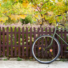bicycle and fence