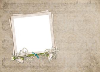 daisies on snapshot frame