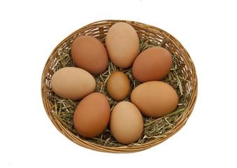 Fresh free range hens eggs in a basket