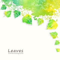 Summer background with green leaves.