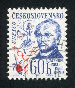 Gregor Johann Mendel