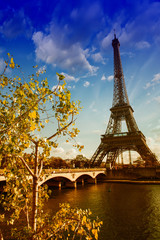 Wall Mural - Beautiful colors and vegetation near Eiffel Tower and Seine rive