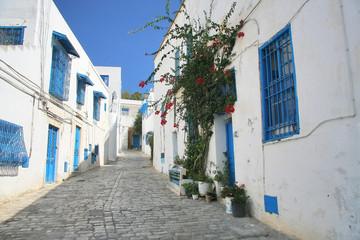 Fotorolgordijn Tunesië Street in Sidi Bou in Tunisia