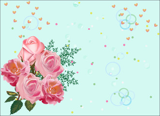 pink rose flowers on light green background