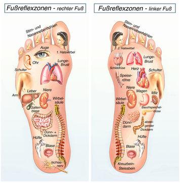 Fußreflexzonen.Rechter Fuß-linker Fuß
