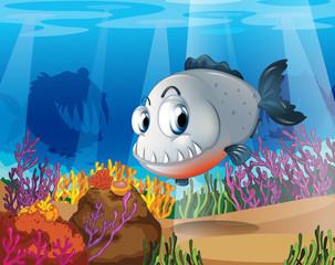 Poster Submarine A piranha near the coral reefs