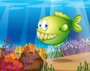 Poster Submarine A green piranha