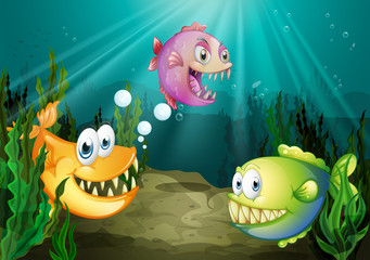 Poster Submarine Three different kinds of fishes with big fangs under the sea
