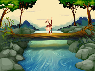 Foto op Plexiglas Rivier, meer A monkey crossing the river