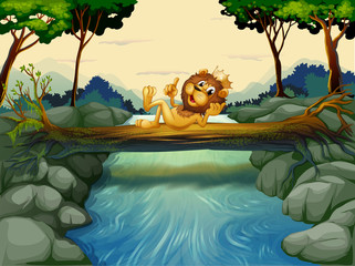 Foto op Plexiglas Rivier, meer A lion with a crown at the river