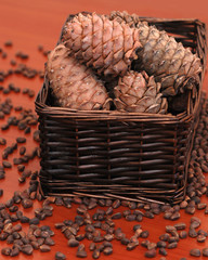 pine cones and nuts in a basket