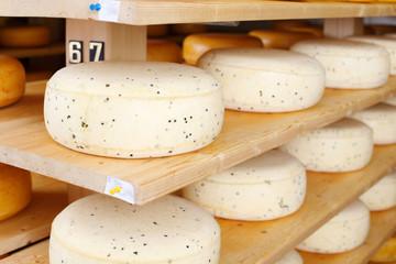 junger käse im reiferaum